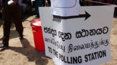 local govt elections